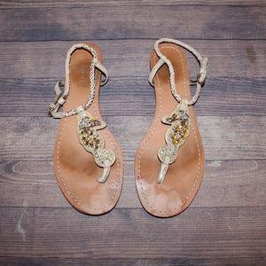 Coach Seahorse Sandals Size 8